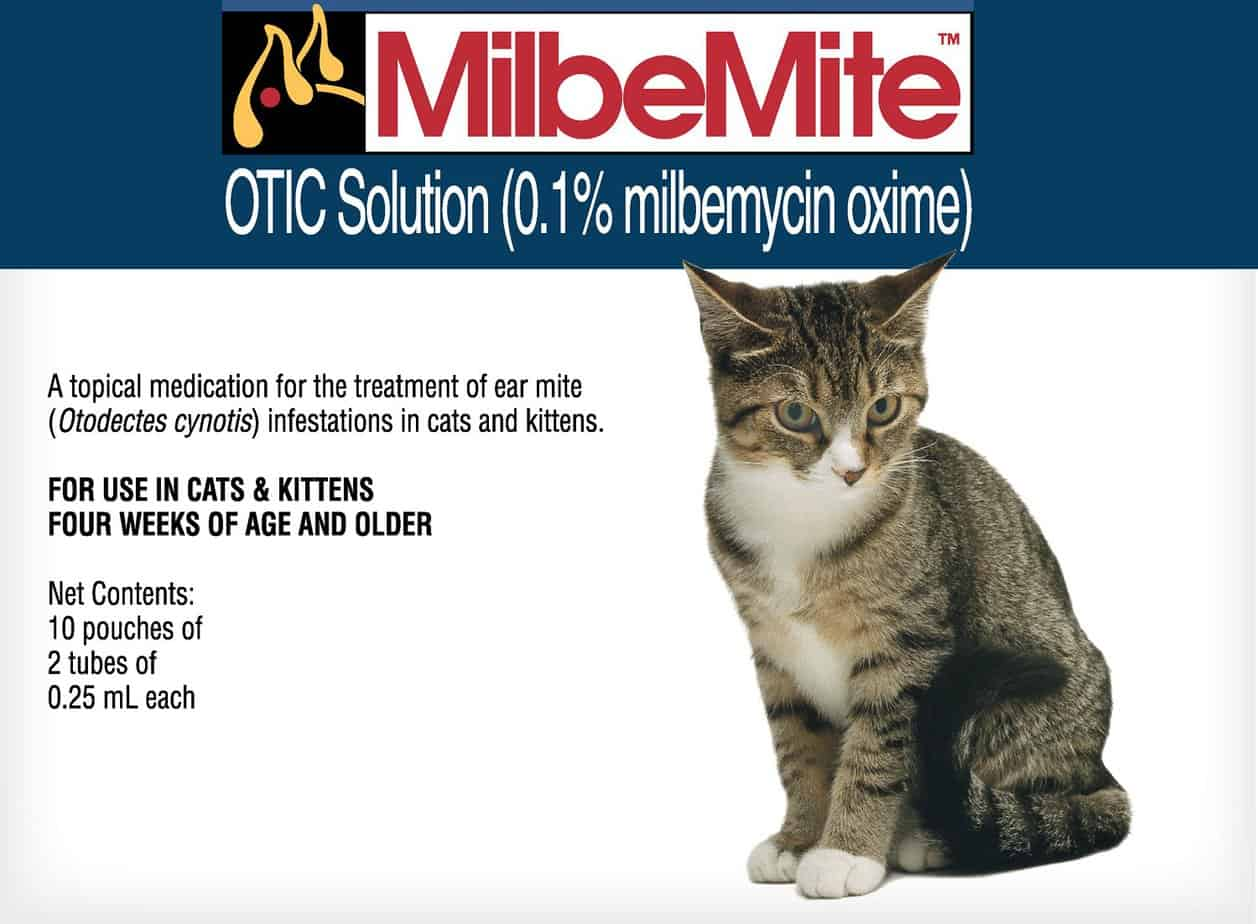 Milbemite Otic Solution for Cats | Chewy