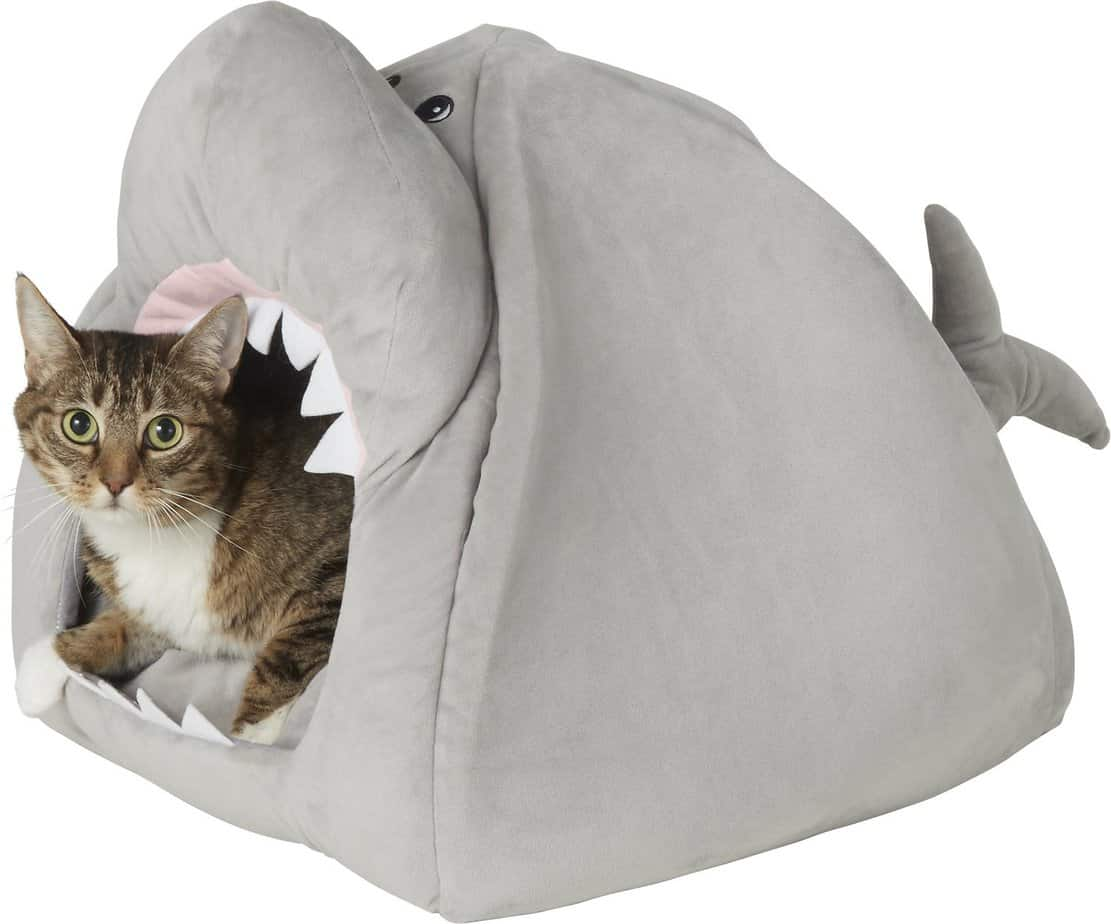 FRISCO Novelty Shark Covered Cat & Dog Bed   Chewy