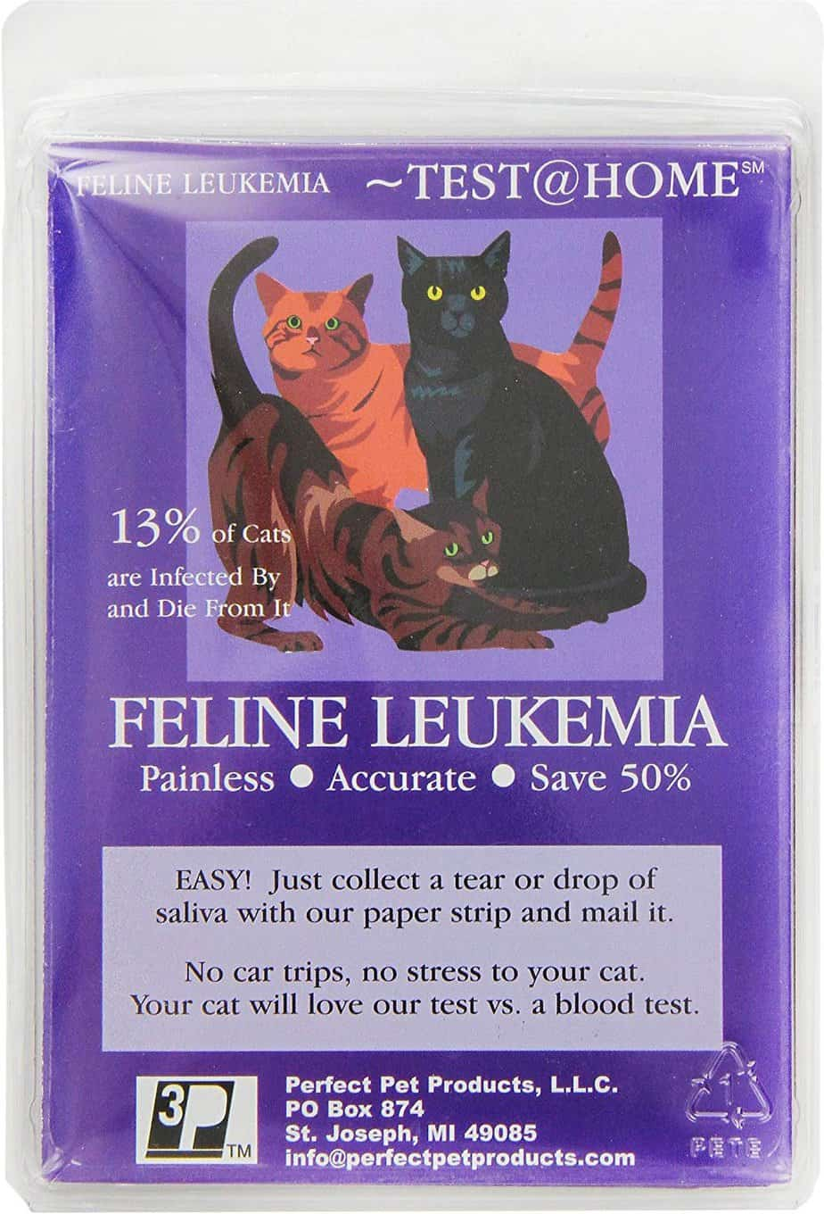 Perfect Pet Products Leukemia Testing for Cats | Chewy