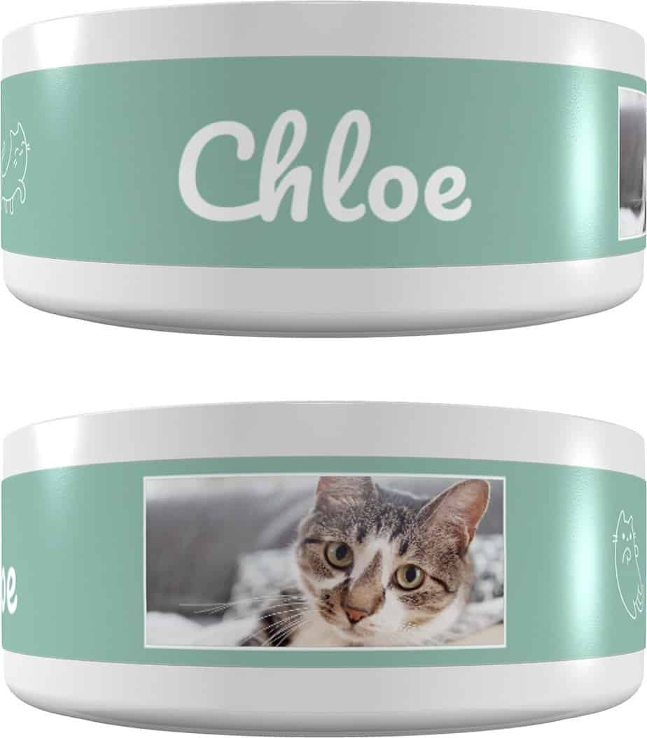FRISCO Playful Kitty Ceramic Personalized Cat Bowl   Chewy