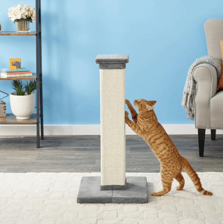Frisco 33.5-in Sisal Cat Scratching Post | Chewy